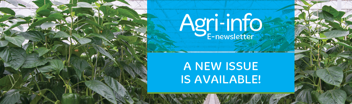 Agri-info Newsletter – Issue 10 – November 2017