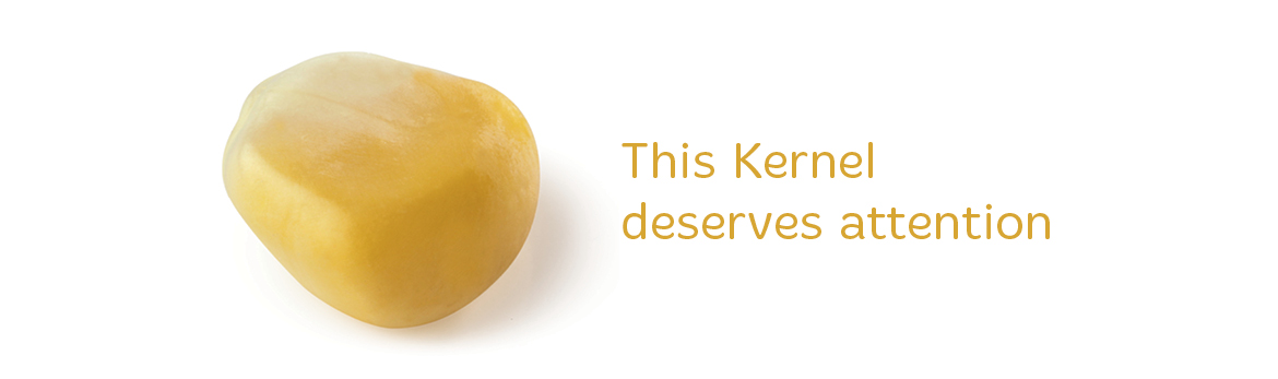 An image of a kernel of corn with the words 'This Kernel deserves attention' to the right