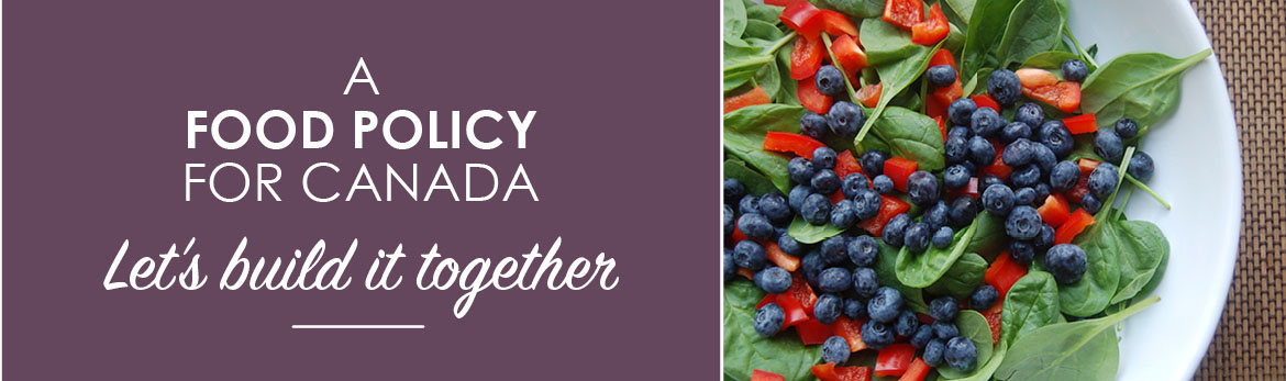 An image of a salad with text 'A Food Policy for Canada – Let's build it together'