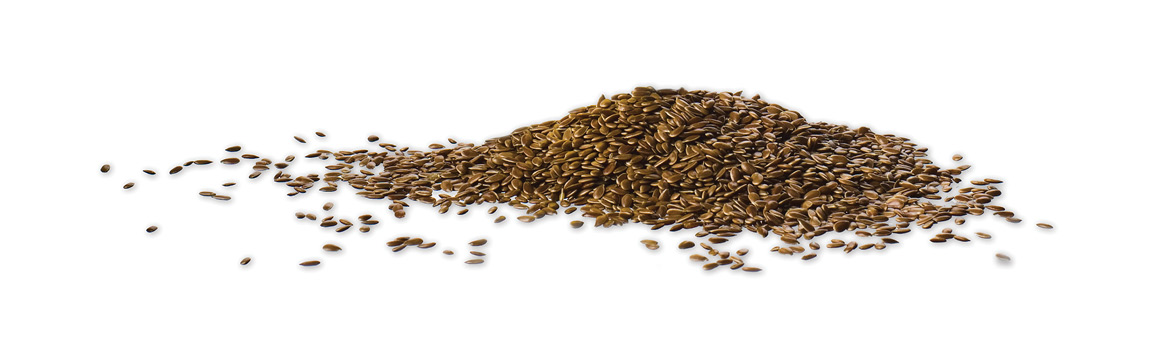 Flaxseed on a white background