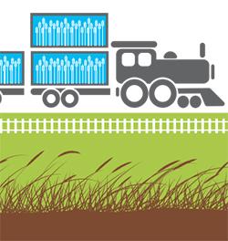 Train transportant des céréales