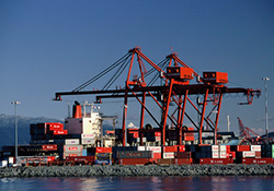 Cargo port with shipping containers