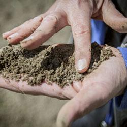 Finger feeling texture of soil in palm of hand.