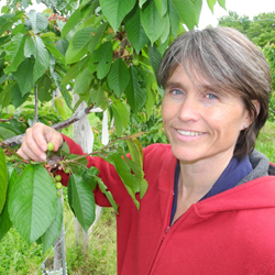 Dr. Suzanne Blatt holding the branch of a cherry tree