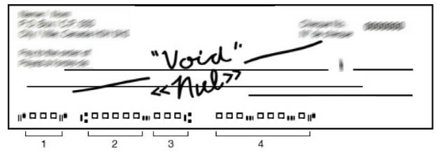"""Blank cheque with """"void"""" written on it"""