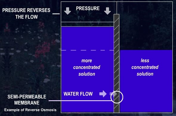 Description of this example of reverse osmosis precedes.