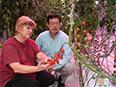 Greenhouse Lighting: Bright lights, big produce