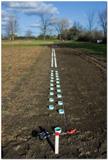 Deux rangées de plus de 80 tubes en plastique enfoncés à la verticale dans un champ