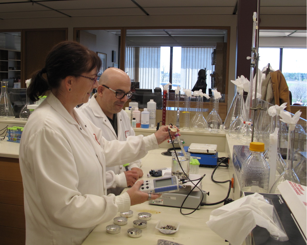 Le chercheur Martin Mondor et son assistante de recherche Hélène Drolet manipulant des outils de laboratoire pour procéder à la nixtamalisation du maïs de variété « Blue ».