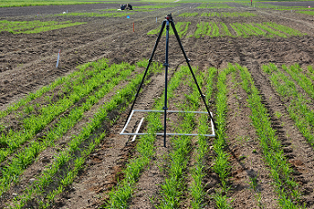 Tripod sits over one square metre plot to capture soil coverage data