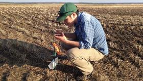Boyd Mori. Ph. D., dans un champ de canola près de Saskatoon.