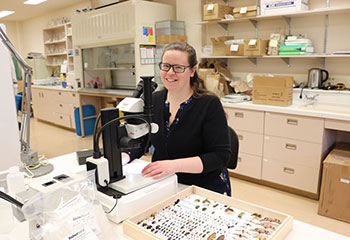 Dr. Meghan Vankosky with invasive species on pins.