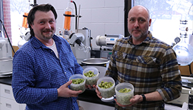 Researchers holding containers of wild hops in laboratory.