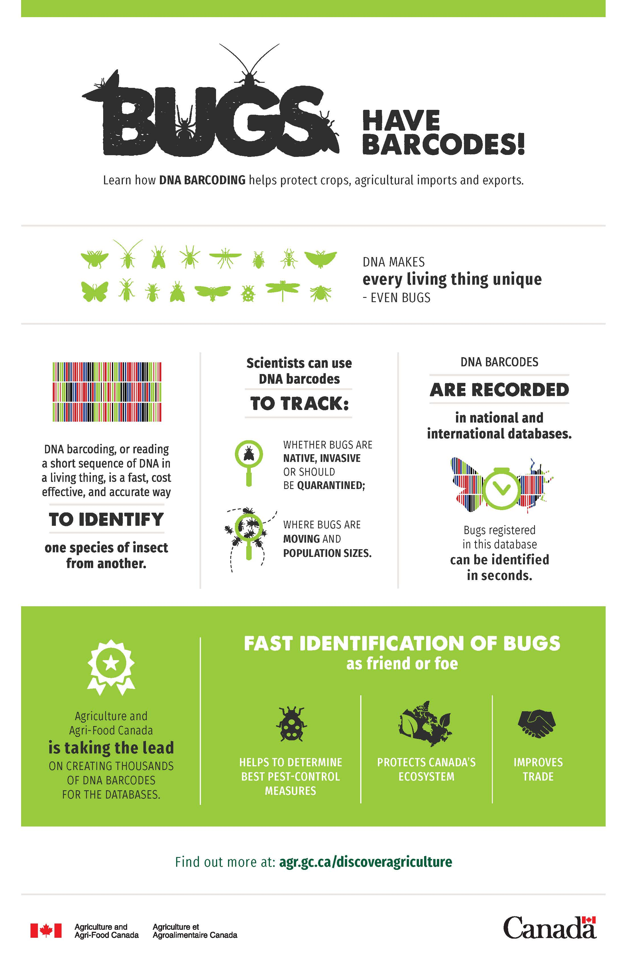 Infographics – agricultural products and their impacts - Agriculture