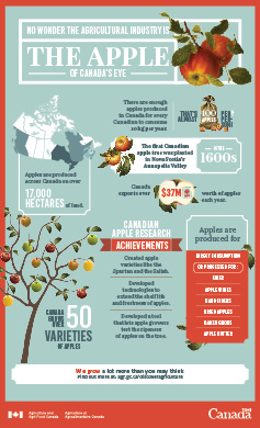 Infographics – agricultural products and their impacts