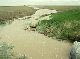Un tuyau qui décharge de l'eau chargée de sédiments sur un champ