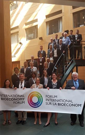 Les participants à la réunion plénière du FIB,  2019