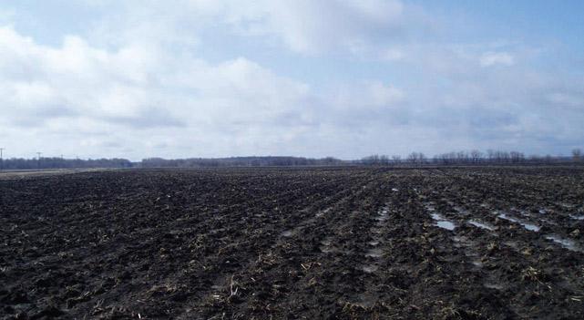 Muddy croplands