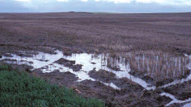 Damaging tire tracks left in wet soils
