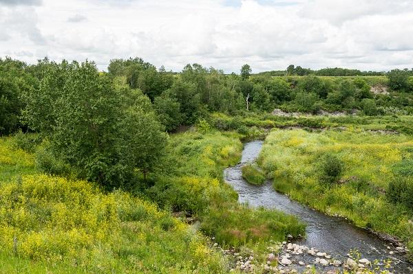 Minnewasta Creek