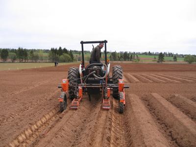 Un semoir tiré par un tracteur ensemence des carottes sur des buttes disposées en rangs.
