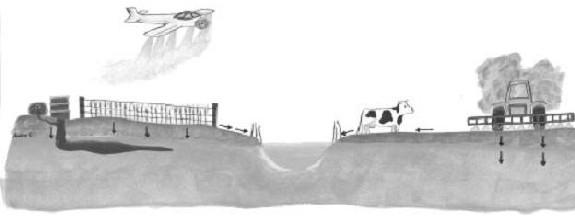 Une illustration de pesticides étant pulvérisés et se dirigeant vers une source d'eau.