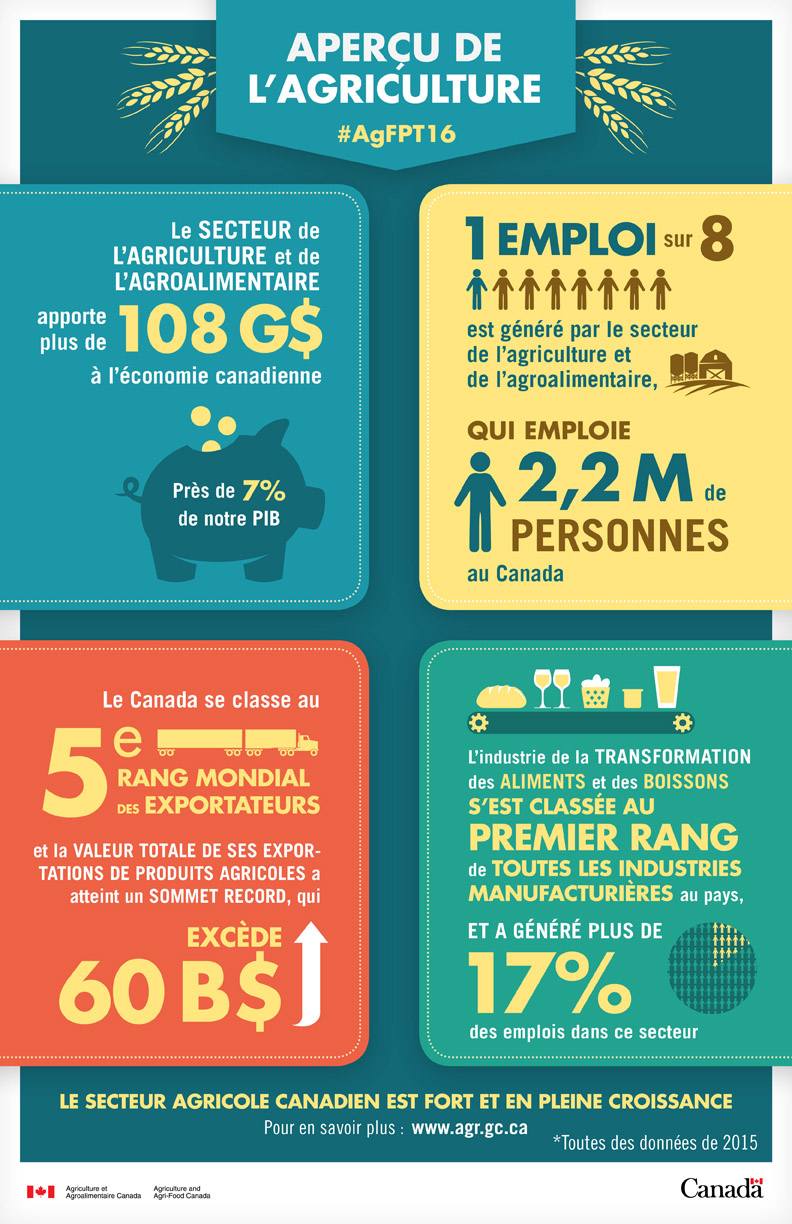 infographiste canada