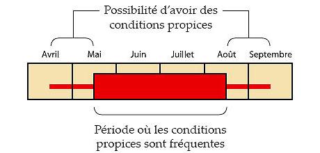 Possibilité d'avoir des conditions propices et Période où les conditions propices sont fréquentes