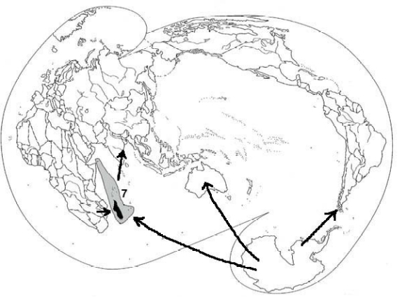 Map showing biogeographic regions. Origins, faunal exchanges and ancient dispersal routes across oceans are presented. Description of this image follows.