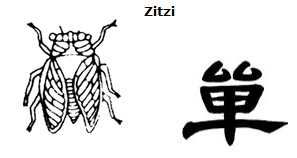 An illustration showing a cicada, the word 'zitzi' ('cicada' in Greek), and a Chinese pictograph of a cicada with its wings extended.