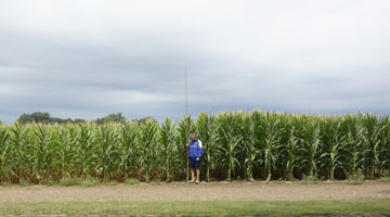 Man standing in corn field with taller corn on the right