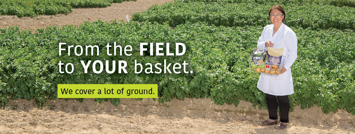 Helen Tai: From the field to your basket. We cover a lot of ground.