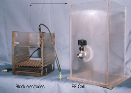 Figure 1: Two separate components of an electroflotation cell (the block electrodes and the cell)