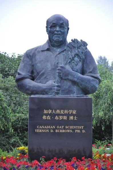 The bronze bust of Dr. Burrows