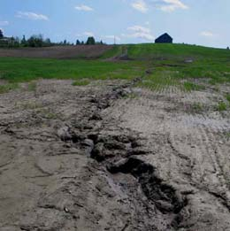 Farmland damaged by soil erosion and inadequate surface drainage.
