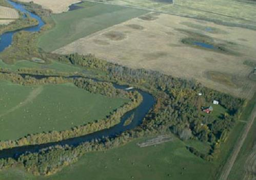 Aerial view of a water body, its riparian area and the surrounding upland vegetation.