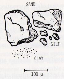 Sand particles (approximately 100 micrometers in diameter) are bigger than silt particles (approximately 20 micrometers in diameter) which are bigger than clay particles.