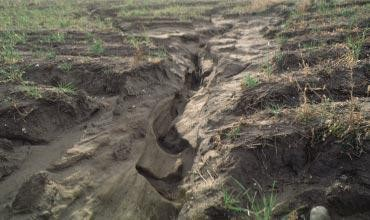 Water erosion of sandy soil