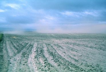 L'érosion éolienne des sols sableux