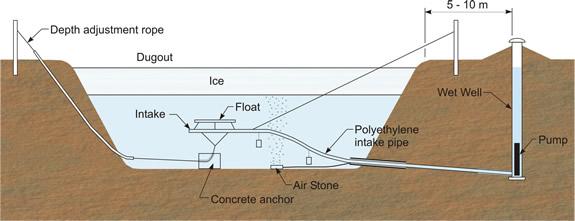 Description of the image follows